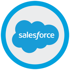 The Salesforce Logo