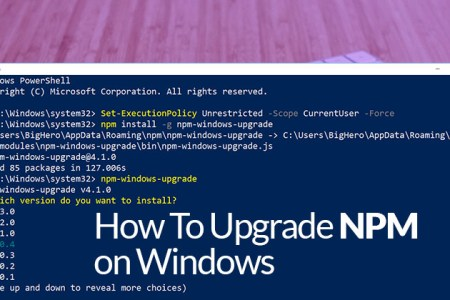 install latest npm version windows
