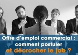 Offre d emploi commercial