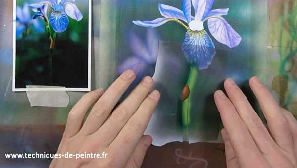 peindre-tige-fleur-iris-techniques-de-peintre
