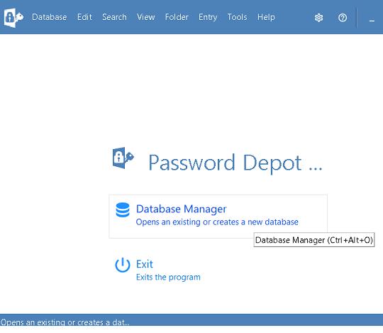 Password Depot Windows Interface