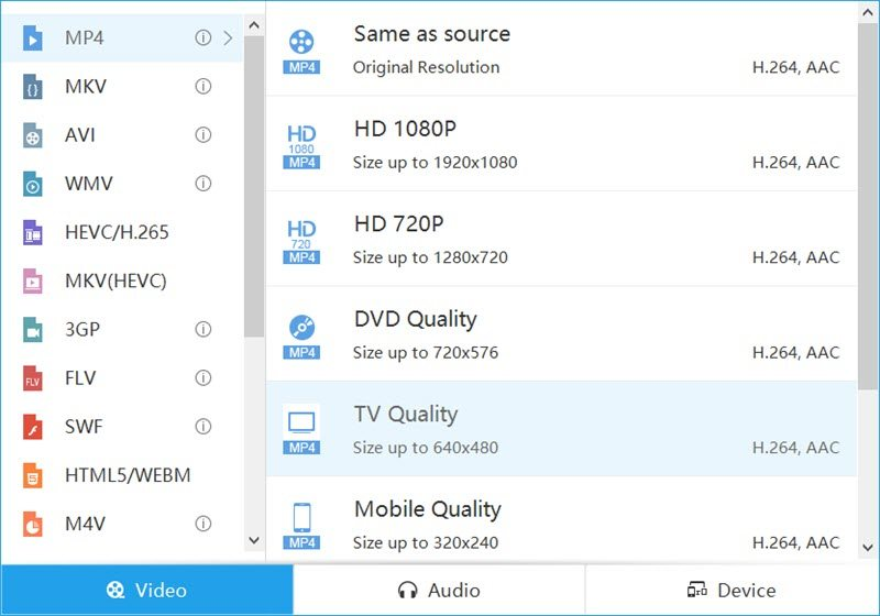 AceThinker Video Master conversion formats
