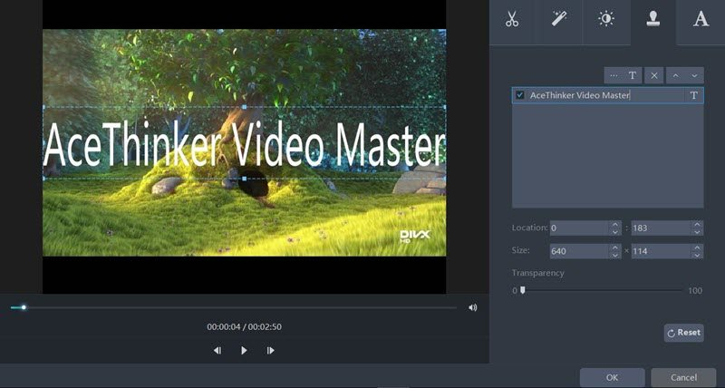 AceThinker Video Master watermark feature