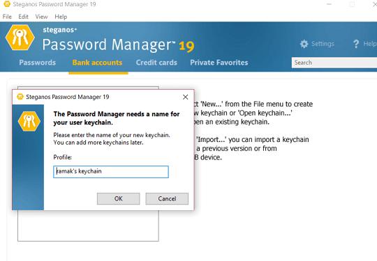 Steganos Password Manager 19 interface