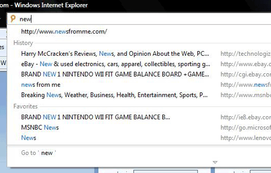 Internet Explorer 8 Address Bar