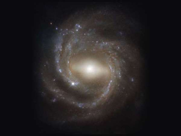 Perfect Example of a Barred Spiral Galaxy Seen Face On