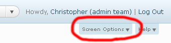 The 'Screen Options' button in the WordPress admin console
