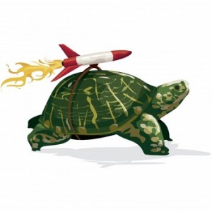 A tortoise with a rocket on its back