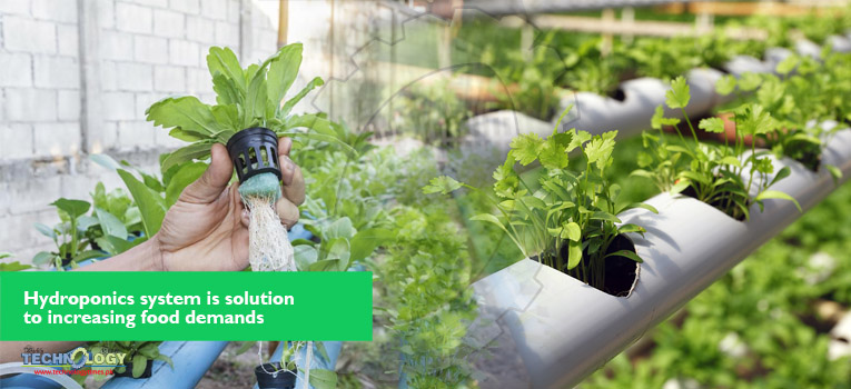 Hydroponics is a technique of agriculture sector which will open more dimensions for the agriculture sector