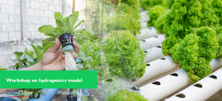 Testing Indigenous Hydroponics Model for Vegetable Growing
