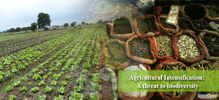 Agricultural Intensification: A threat to biodiversity