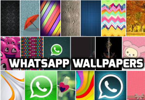 Download 15+ simple,stylish whatsapp wallpapers and set as your wallpaper