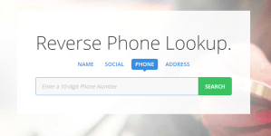 5 best reverse phone lookup services with accurate results