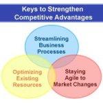 SAP Advantages and Disadvantages Explain