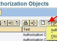 authorization objects