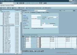 How duplicate invoice check works - SAP