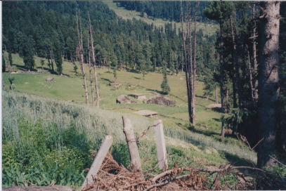 Hiding Place used for hunting