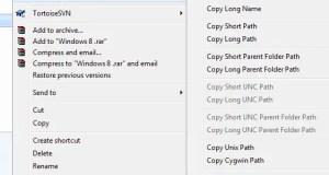 Path Copy Copy options