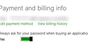 Windows store password protection