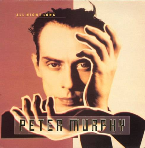 Peter Murphy - All Night Long (1988)