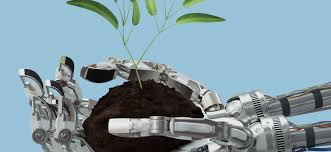 Robotic applications in agriculture