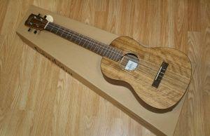 How to play Christmas songs on best baritone ukulele