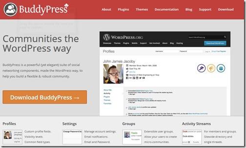 BuddyPressSite