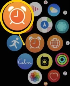 Alarms app on Apple Watch