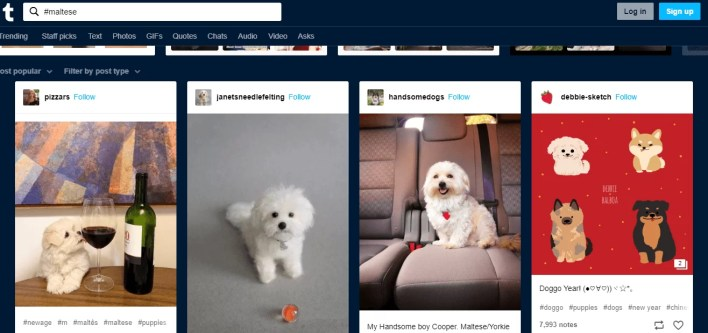 Search using Hashtag