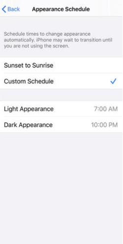 Custom Dark Mode Timing