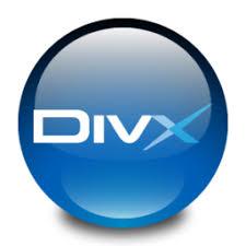 DivX Bihurgailua