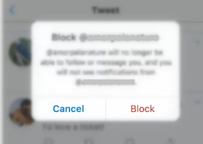 Tap on Block button