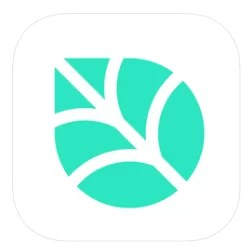 Birch Finance - Budgeting Apps for iPhone