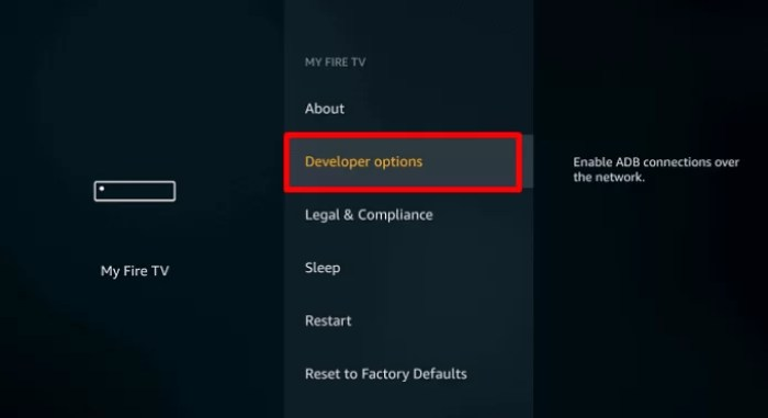 Click Developer Options