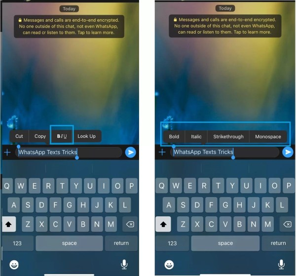 WhatsApp Text Tricks to Format Text in iOS