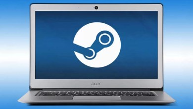 Steam on Chromebook