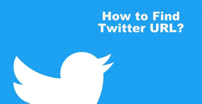 How to Find Twitter URL
