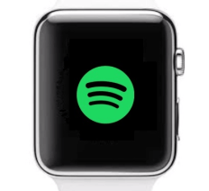 Spotify - Spotify On Apple Watch