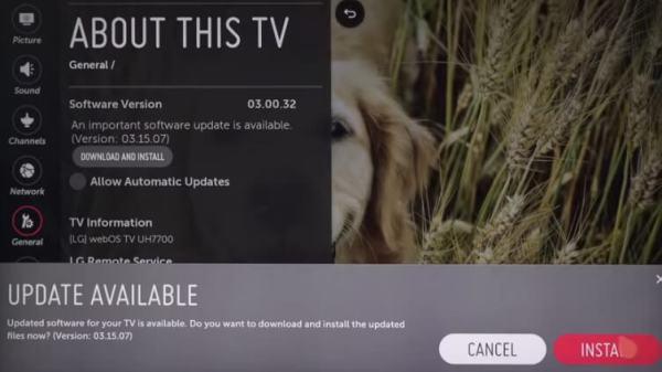 Update LG TV - Install