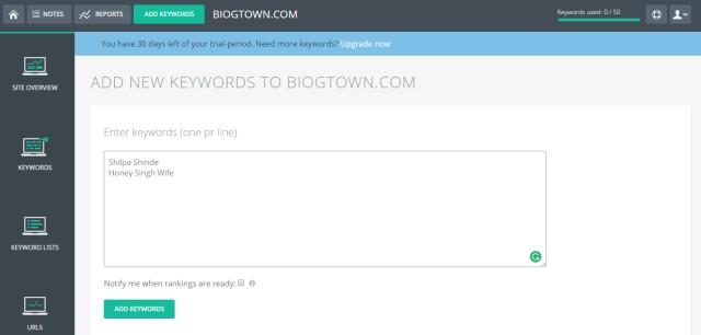 tinyranker reports keywords 2
