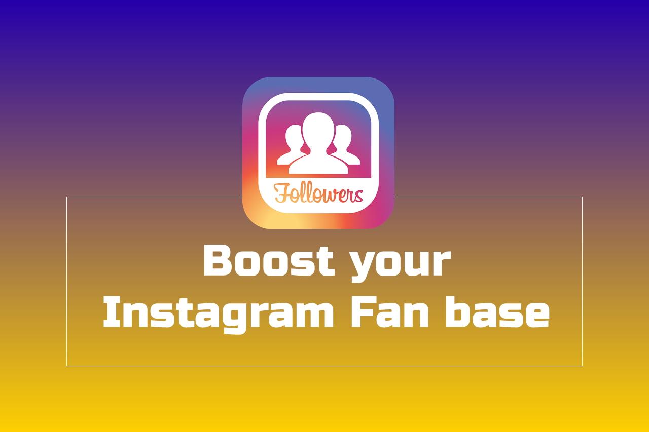 Instagram Account's Fan Base