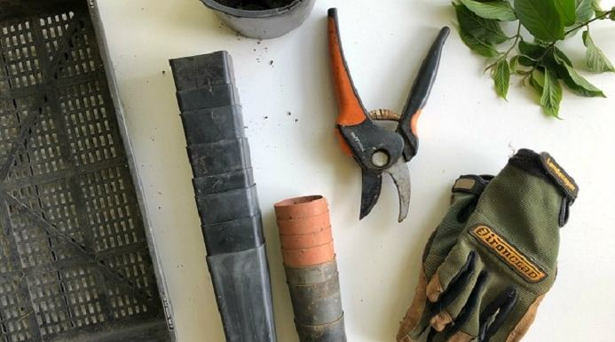 required tools for garden
