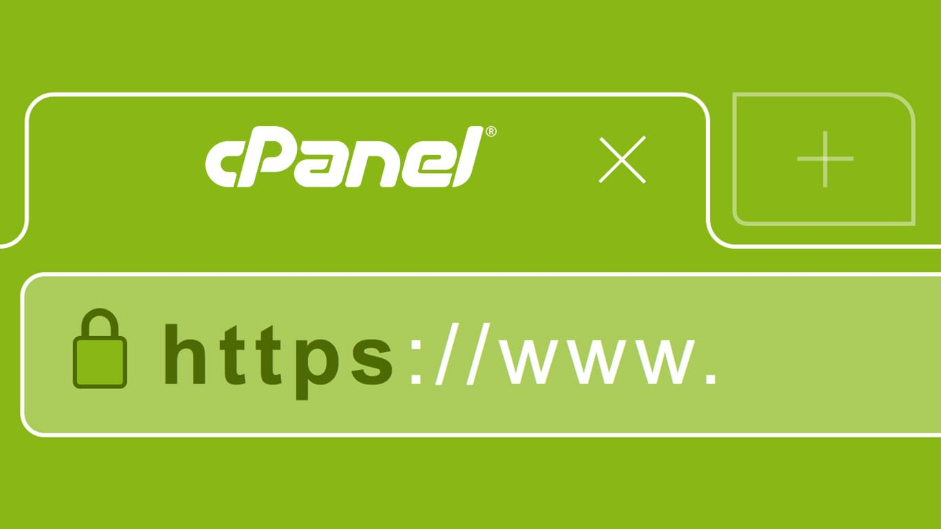 How to generate csr using cpanel tech quintal csr is an encoded file that provides you the way to send your public key to the ssl certificate provider along with some information that identifies your 1betcityfo Images