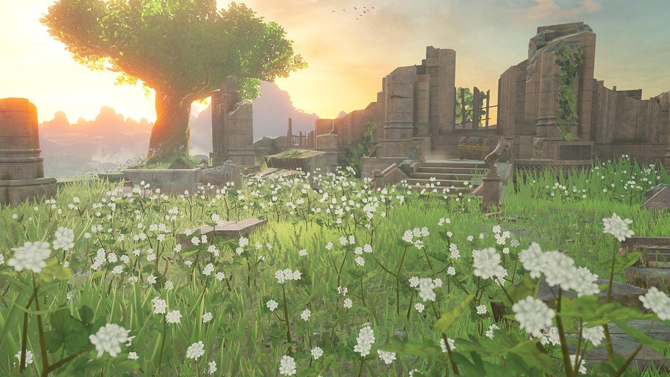 Graphics in The Legend of Zelda Breath of the Wild