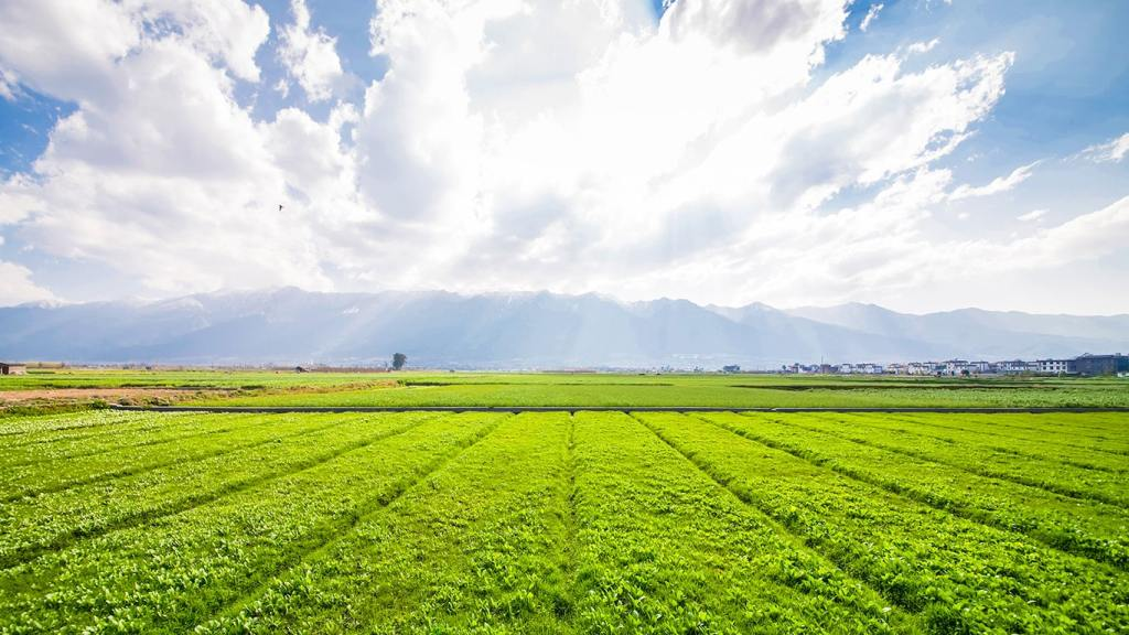 Modern Technology for Enhancing Agricultural Productivity