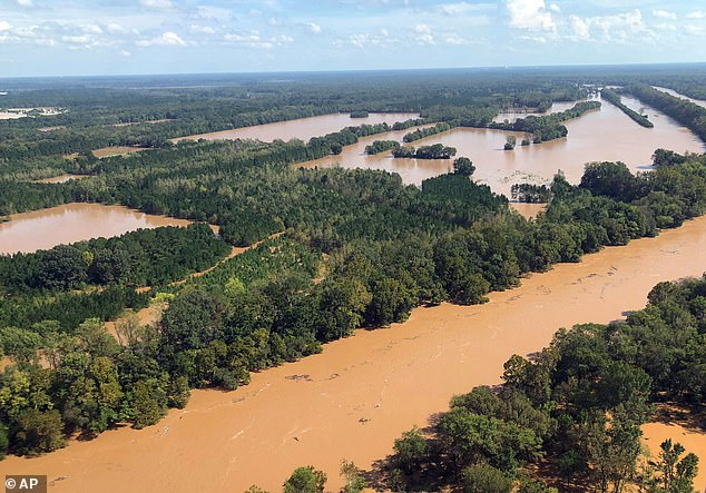 Half of the world's measured precipitation that falls in a year falls in just 12 days, a shocking new study has found. Rising flood waters in the Pee Dee area in Marion County, S.C.  South Carolina officials say the damage done by Hurricane Florence earlier this year is about half what was originally feared.
