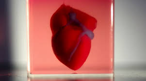 3D Printing at Its Peak- First 3D Printed Functional Heart Declared