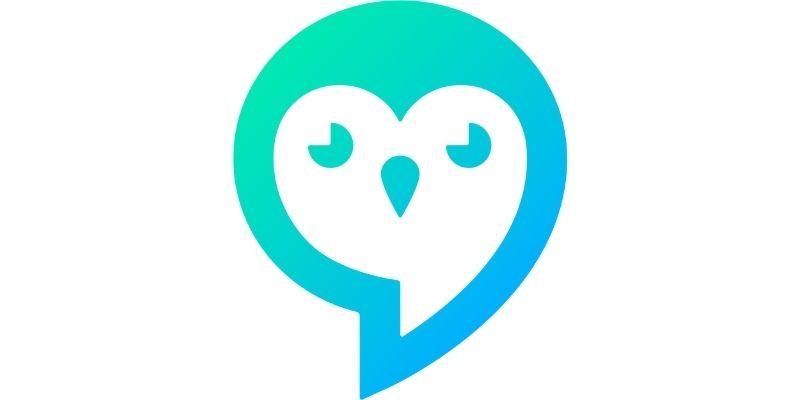 Loopin logo wide