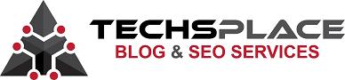 TechsPlace SEO Services