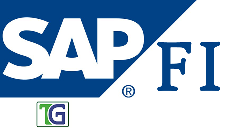 SAP FI Financial Accounting Module and Concepts,SAP FI concepts,sap fi module,sap financial accounting module,sap financial accounting concepts,
